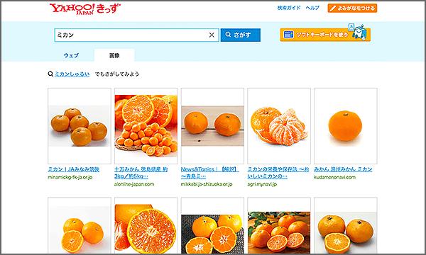 画像検索の検索結果