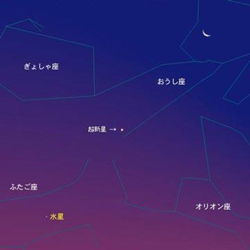 新星(しんせい)