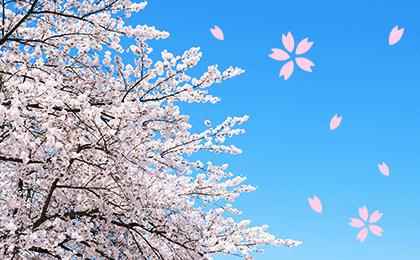 2015年春 新生活特集