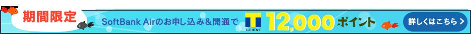 期間限定 SoftBank Airのお申し込み&開通でTポイント12,000ポイント 詳しくはこちら