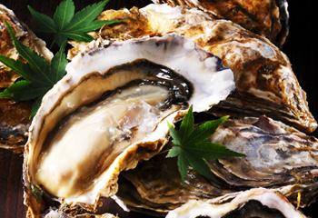 殻付き生牡蠣 Lサイズ10個