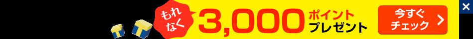もれなく3,000ポイントプレゼントキャンペーン