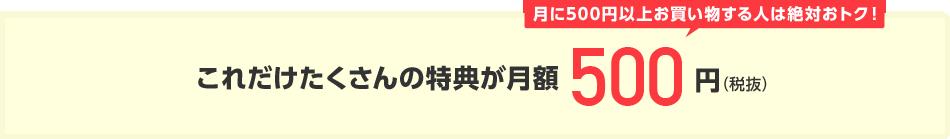 これだけたくさんの特典が月額500円(税抜)月に500円以上お買い物する人は絶対おトク!