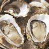 三陸の牡蠣ランキング
