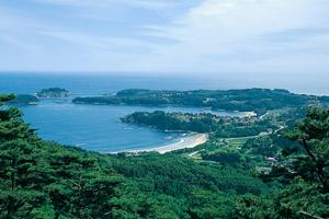 大島の写真