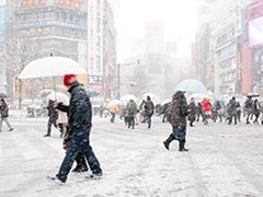 雪の渋谷スクランブル交差点