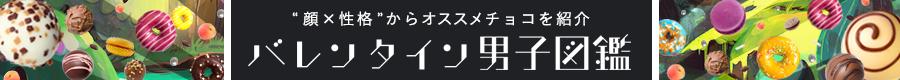バレンタイン男子図鑑
