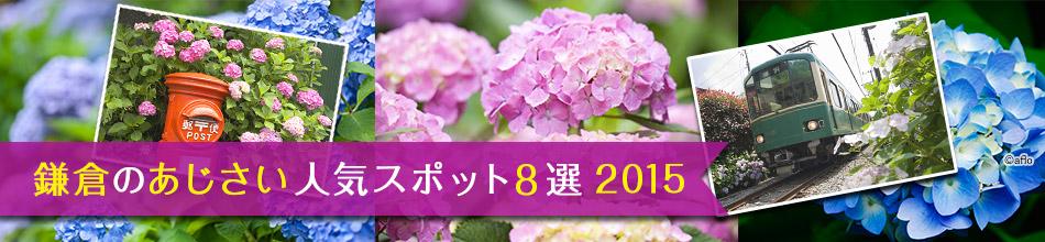 鎌倉のあじさい人気スポット8選 2015