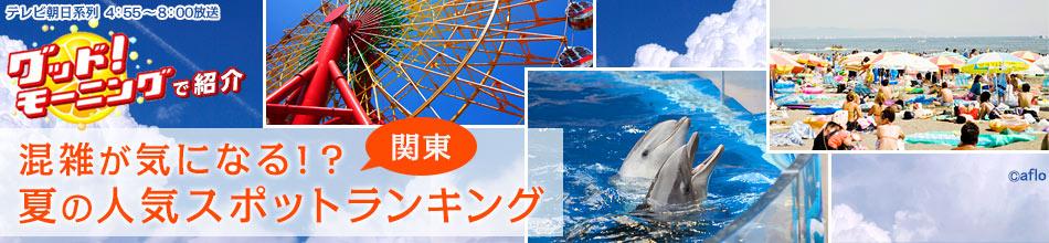 混雑が気になる!? 夏の人気スポット検索ランキング(関東)
