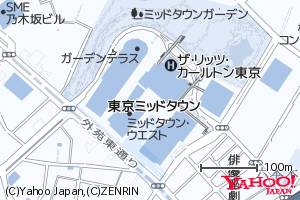 ブルー図式の地図