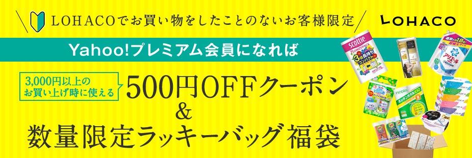 LOHACO500円クーポン&ラッキーバッグ
