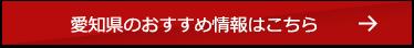 愛知県のおすすめ情報はこちら