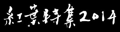 �����ý�2014