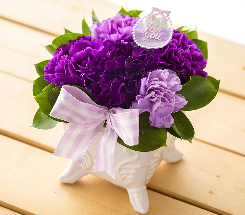 翌日配達お花屋さん 5種類から選べる 青いカーネーション ムーンダスト