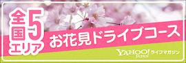 全国5エリア お花見ドライブインコース Yahoo!ライフマガジン