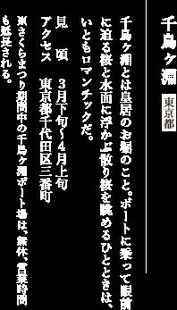 千鳥ヶ淵 東京都 千鳥ヶ淵とは皇居のお堀のこと。ボートに乗って眼前に迫る桜と水面に浮かぶ散り桜を眺めるひとときは、いともロマンチックだ。 見頃:3月下旬〜4月上旬 アクセス:東京都千代田区三番町 ※さくらまつり期間中の千鳥ヶ淵ボート場は、無休、営業時間も延長される。