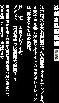 浜離宮恩賜庭園 東京都 江戸時代の大名庭園だった浜離宮。ライトアップされた艶やかな桜と汐留シオサイトのコラボレーションは、都会ならではの絶景。 見頃:4月上旬〜中旬  アクセス:東京都中央区浜離宮庭園1-1 ※開園時間は9時〜17時(入園は閉園時間の30分前まで)。 ※3月28日〜5月6日は18時まで