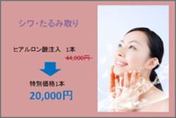 通常価格44,000円→特別価格20,000円
