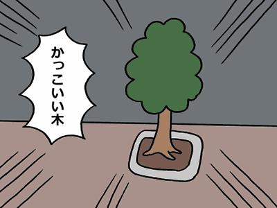 かっこいい木