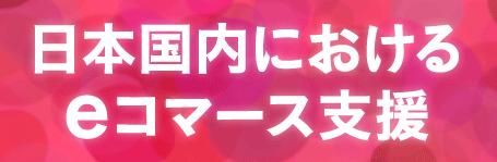 日本国内における eコマース支援