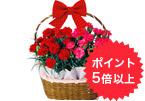 花、ガーデニング用品