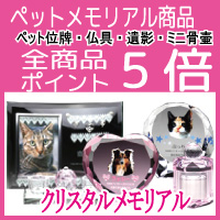 店内全商品ショップポイント5倍!!