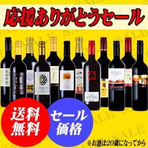送料無料!赤字覚悟の赤ワイン12本セ...