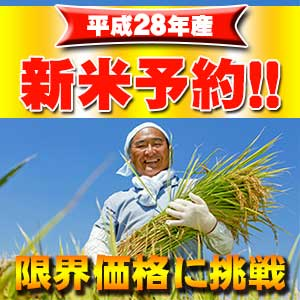 新潟魚沼産コシヒカリ玄米30kgが超...