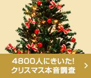 4800人にきいた!クリスマス本音調査