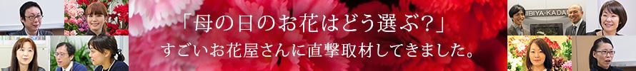 「母の日のお花はどう選ぶ?」すごいお花屋さんに直撃取材してきました。