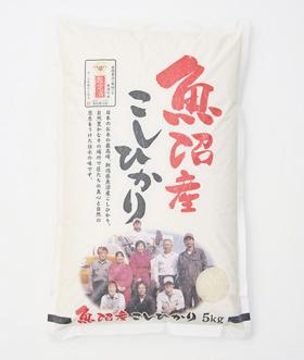 桑原健太郎さんの魚沼産 特別栽培米コシヒカリ
