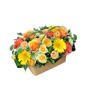 花、ガーデニング