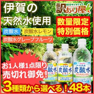 3種類から選べる炭酸水48本セット