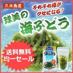 沖縄県久米島産 球美の海ぶどう 塩水漬け