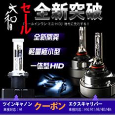 オールインワンHIDキット H16/H11/H8/HB3/HB4 エクスキャリバー