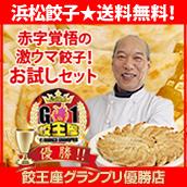 『送料無料』超お得! 赤字覚悟の激ウマ! 浜松餃子♪