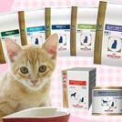 ロイヤルカナン 猫の食事療法食