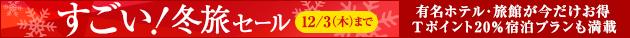 すごい! 冬旅セール